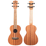 Echo Bridge EB10 Concert Ukulele with Gig Bag