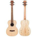 Echo Bridge EB20 Baritone Ukulele with Gig Bag