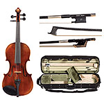 4/4 Alessandro Roma A220G Violin Outfit